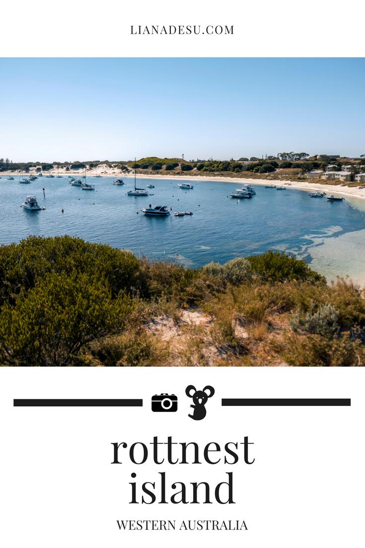 rottnest island.png