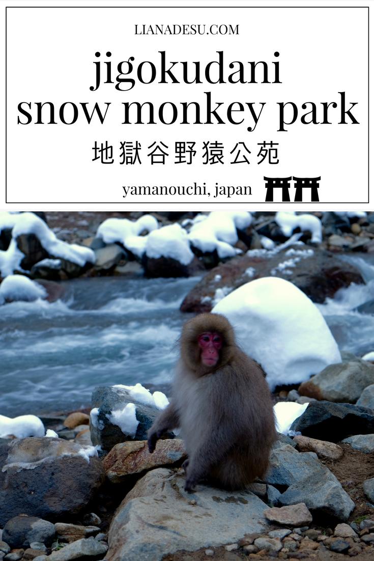 monkey pin 2.png