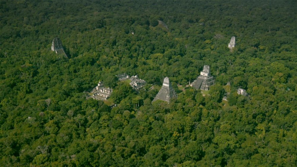 Laser scans revealed more than 60,000 previously unknown Maya structures that were part of a vast network of cities, fortifications, farms, and highways (National Geographic)