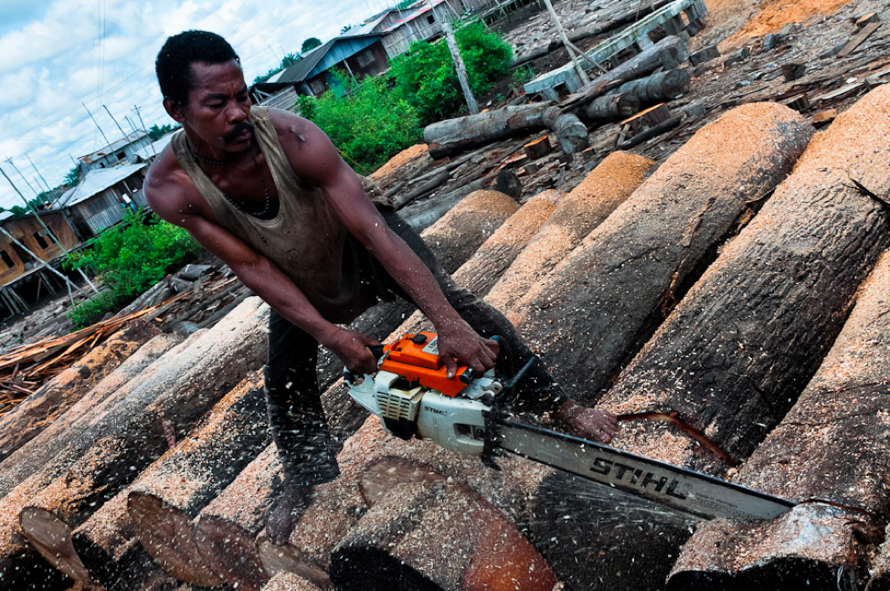 Photo: Wood production at a sawmill in the Colombian Amazon, where the raw materials are mainly used in the construction industry and for paper production. Source: https://www.jansochor.com/photo-blog/rainforest-wood-logging-colombia.
