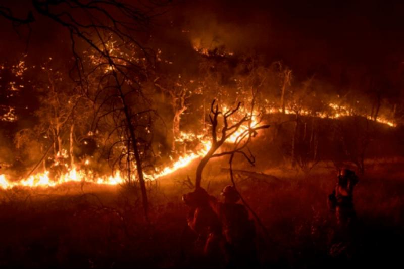 Image source: Mercurynews.com (AP Photo/Noah Berger)