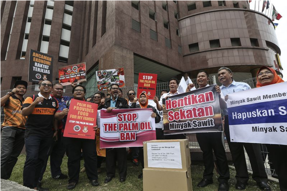 Malaysian oil palm smallholders protesting the ban outside the EU Embassy in the Malaysian capital of Kuala Lumpur. (Source: Azneal Ishak/  Malay Mail )