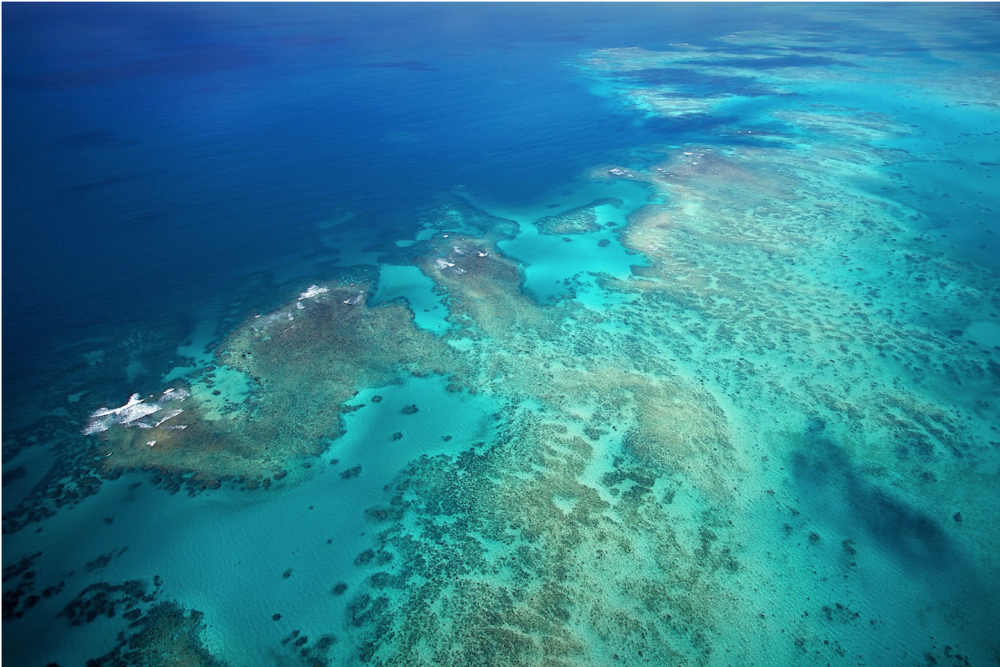 The Great Barrier Reef, off of North Queensland. Photo:  Tropical North Queensland