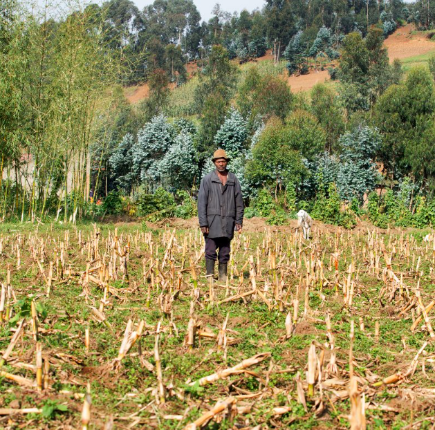 Bizimana Abdullah stands in the field where, in 1994, he burned the bodies of dozens of Tutsi, some of them his friends. The fact that not one bone remains haunts him. Photo:Jean Bizimana/ Time