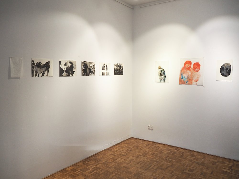 Install @ Chrissie Cotter Gallery, Sydney, 2015