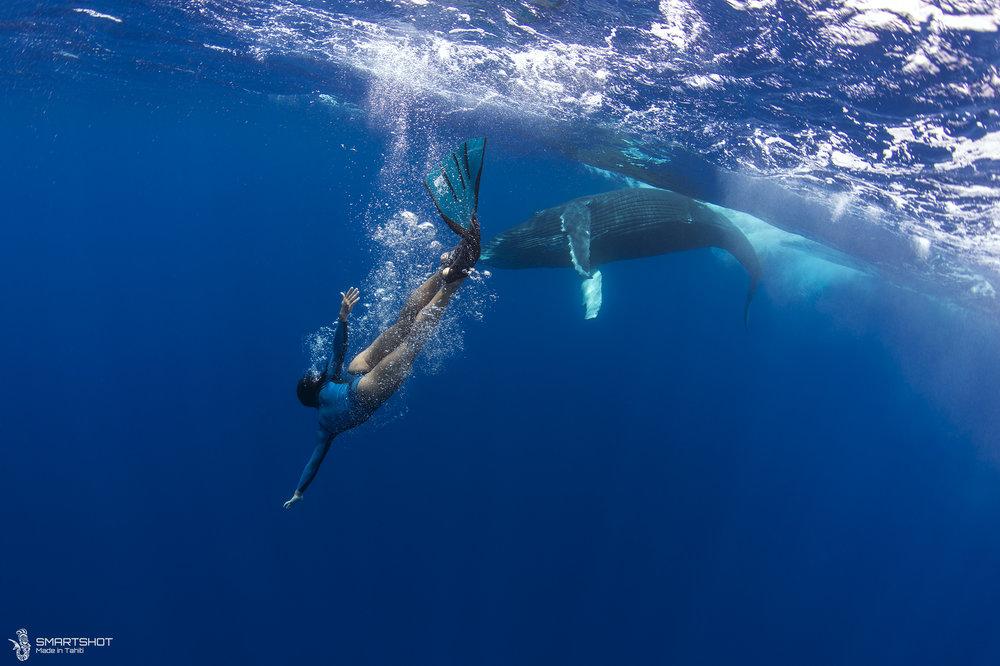 171022_Julia-Whales_Smartshot_065.jpg