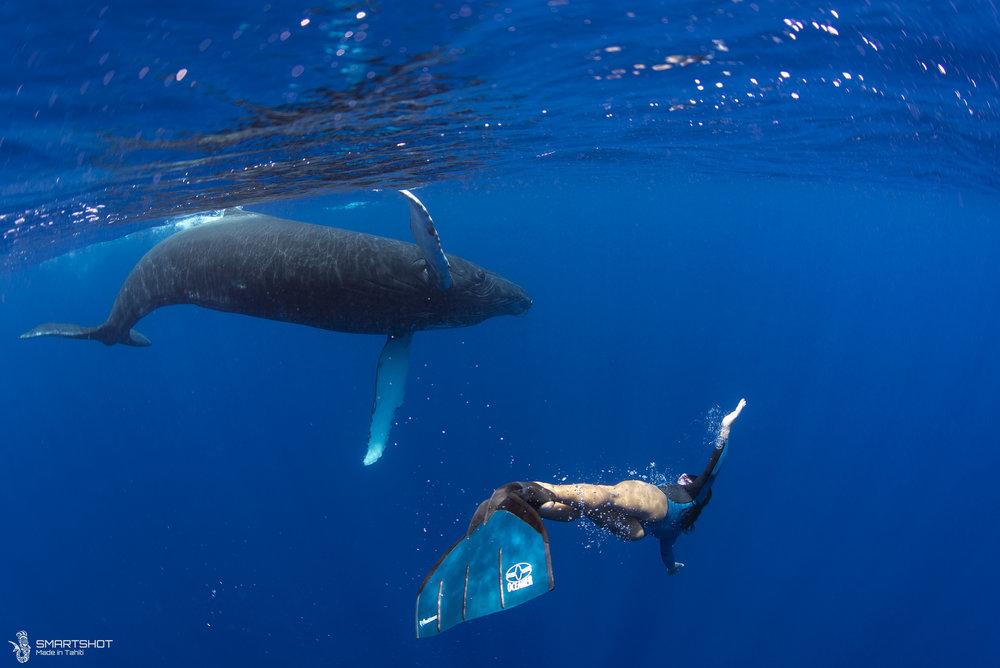 171022_Julia-Whales_Smartshot_070.jpg