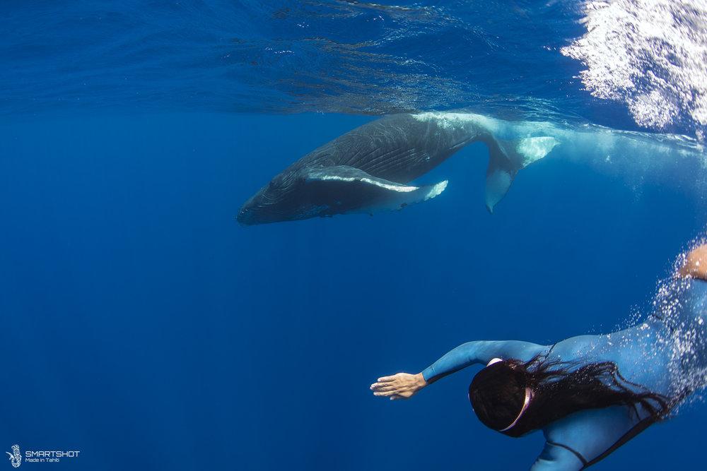 171022_Julia-Whales_Smartshot_060.jpg