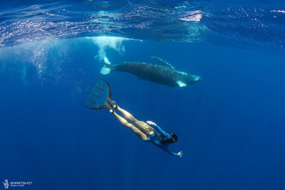 171022_Julia-Whales_Smartshot_056.jpg