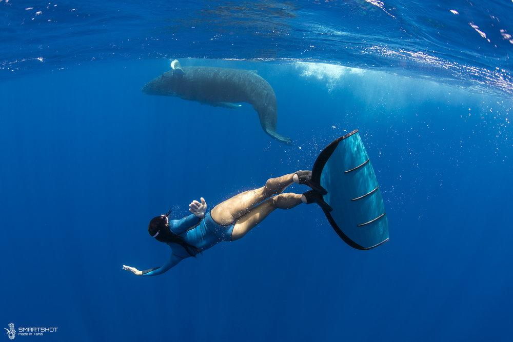 171022_Julia-Whales_Smartshot_050.jpg