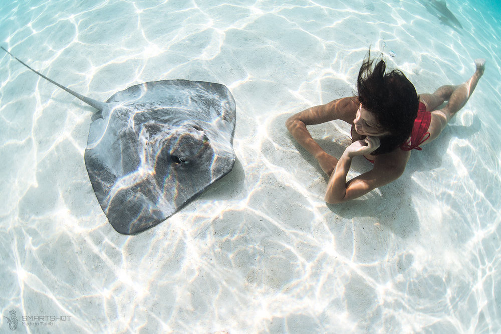 Julia Wheeler, Freediver, Tahiti, Christian Coulombe, Underwater photography