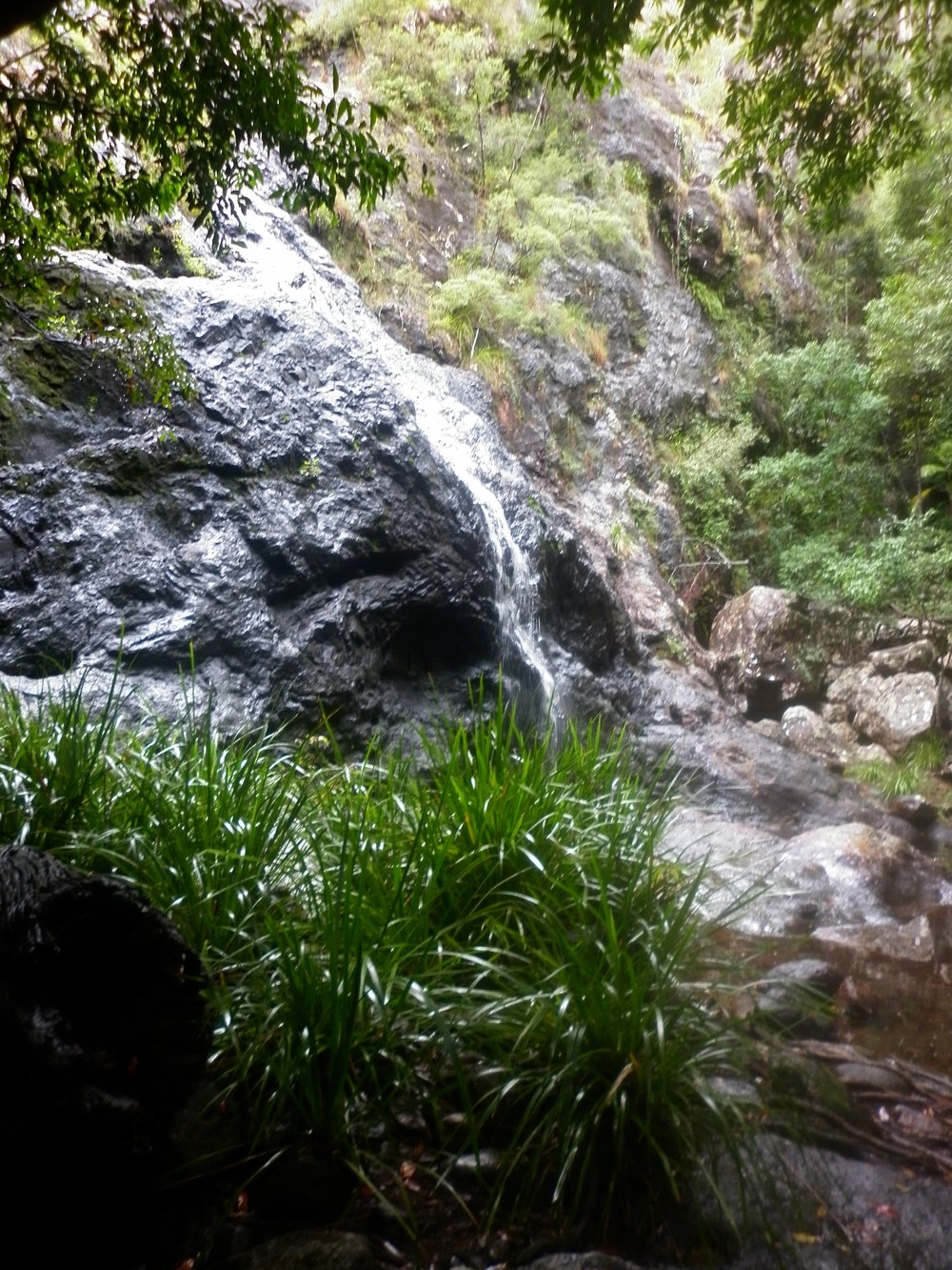 Gheerulla Falls.JPG