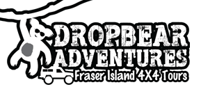 Fraser-Island-Tours-Drop-Bear-Logo1.png