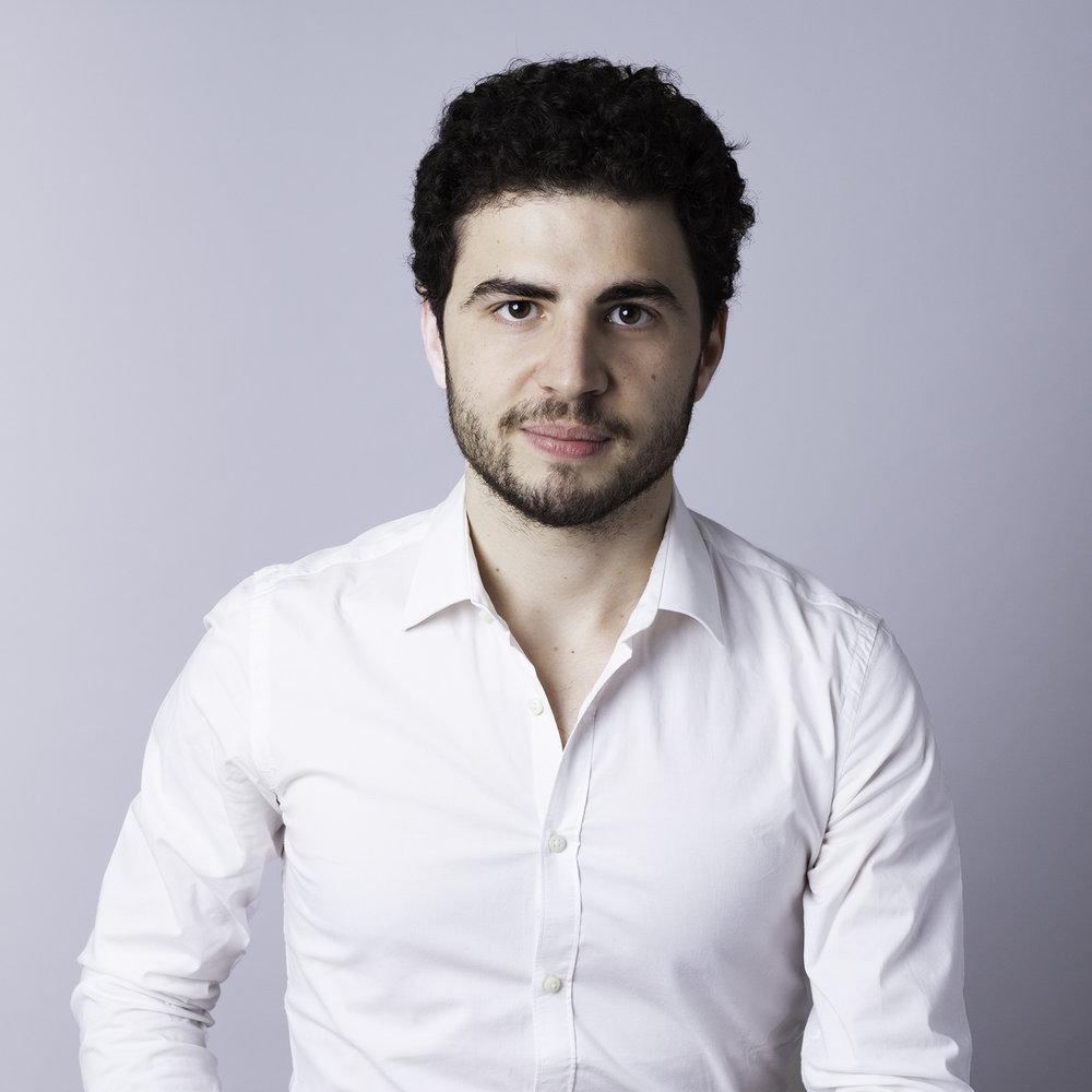 Nicolas LaloumData Scientist -
