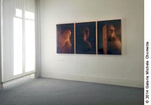 photo-art-noelle-hoeppe-expo-janus-galerie-michele-chomette-2014.jpg