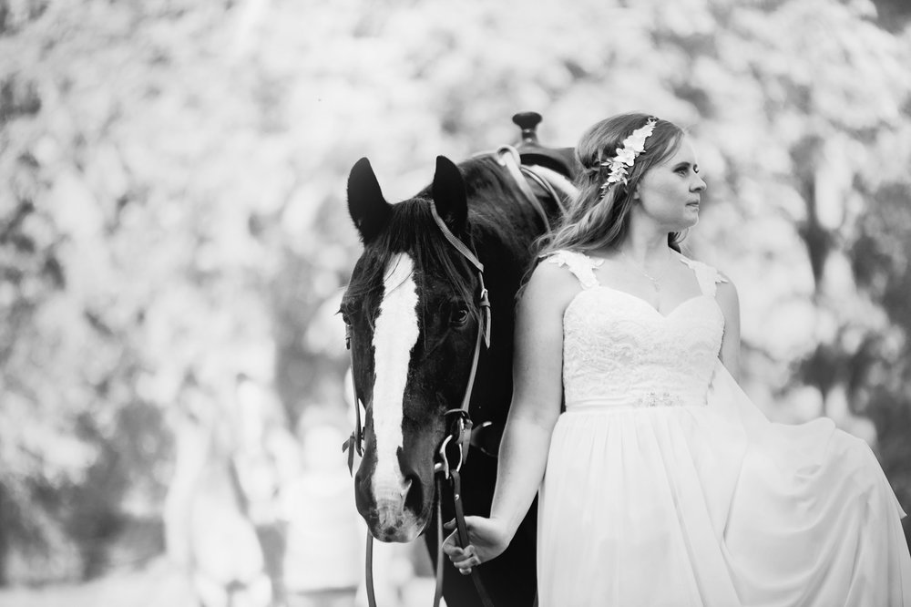 Willow Creek Barn Events Wedding Photos