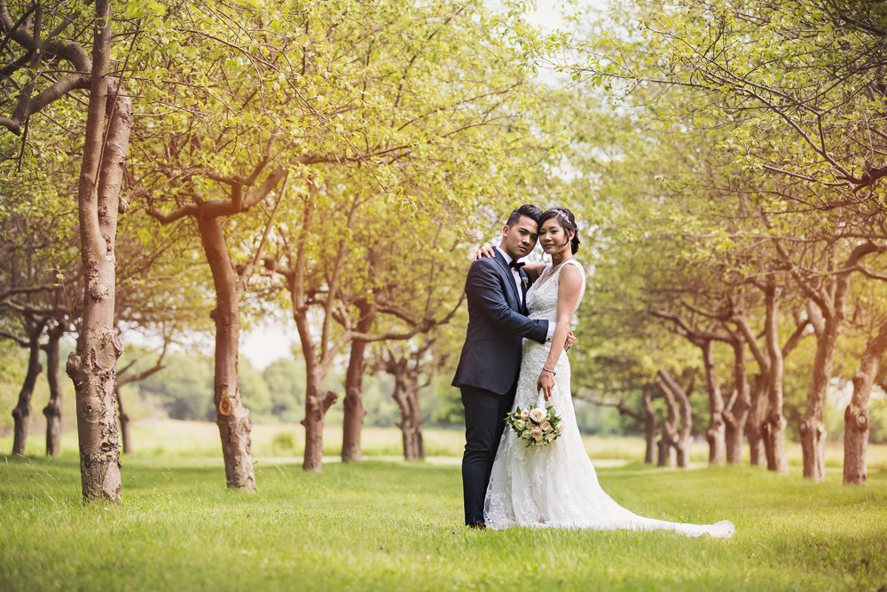 The orchard at  Bellamere Winery  is one of the most beautiful spaces for wedding photos!