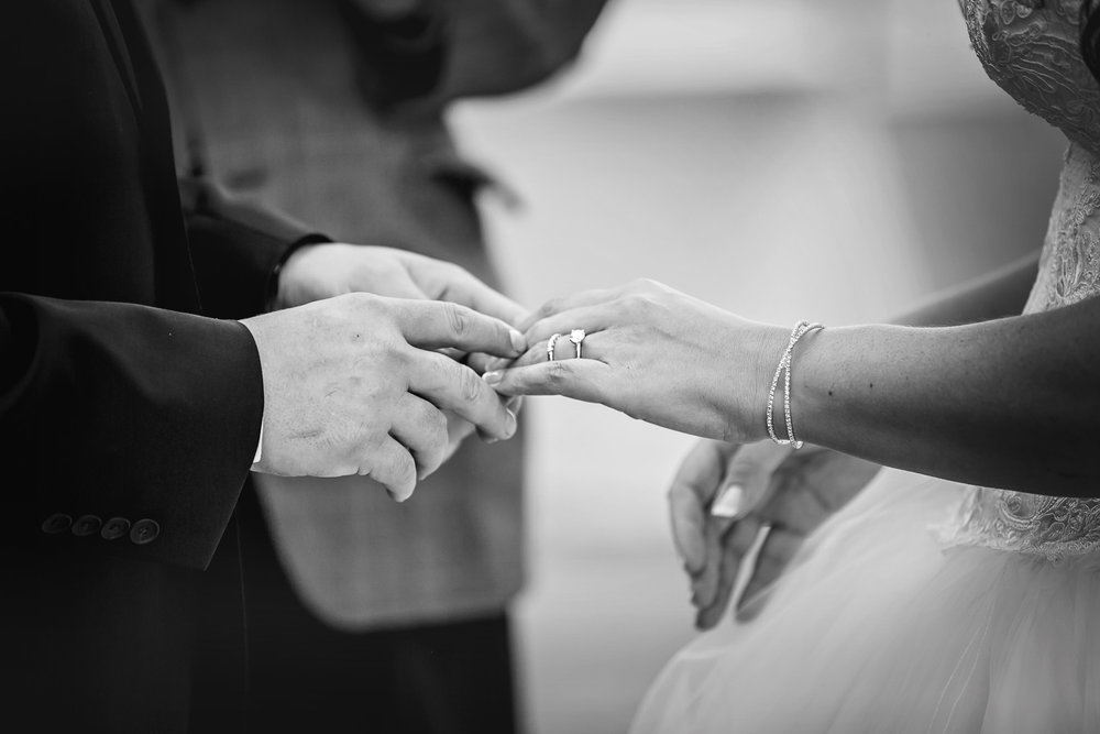 Liuna Gardens Wedding Photos--46.JPG