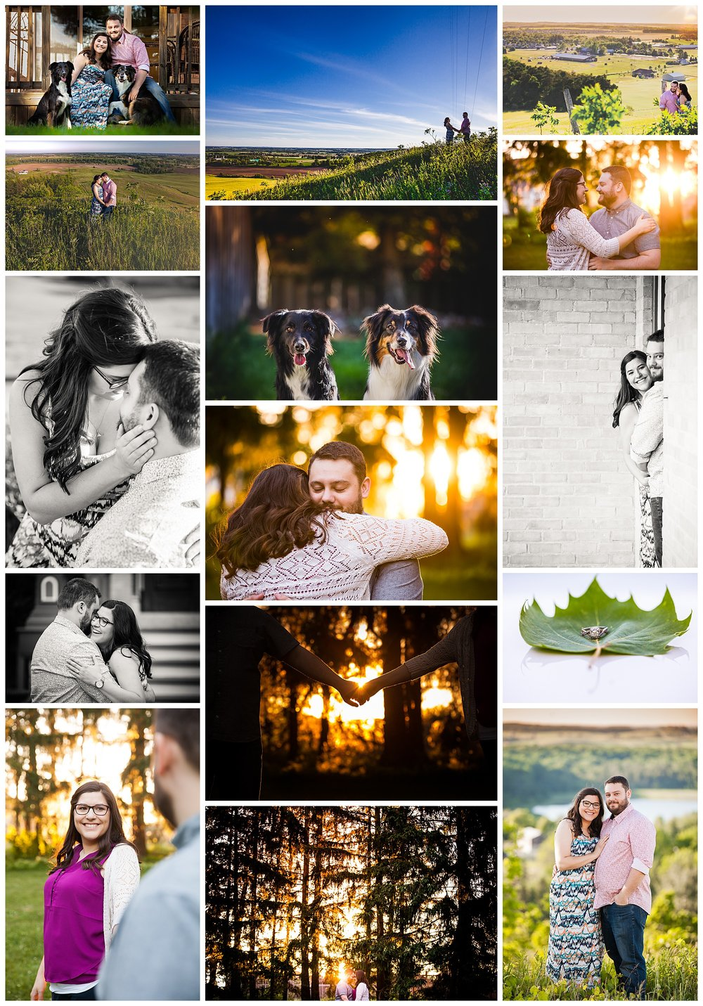 New Hamburg, Ontario engagement photography by VanDaele & Russell