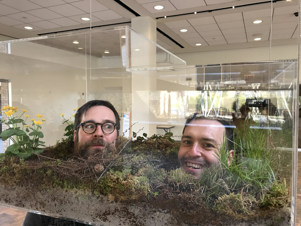 Illingworth & Simpson in  Vaughn Bell' s brilliant terrariums