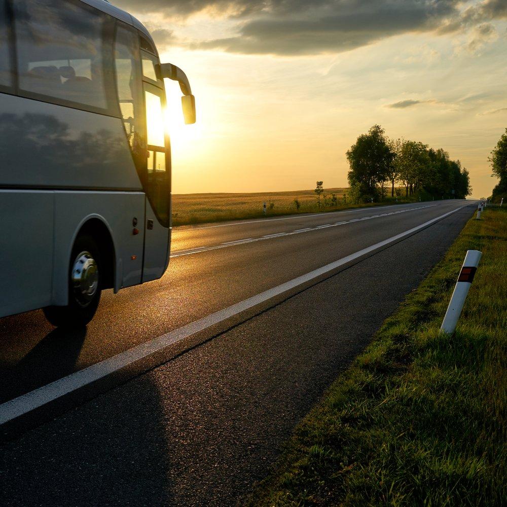 Fram och tillbaka - Det har sina fördelar med att befinna sig mitt i staden. Där kan man till exempel ta en transferbuss till naturen och Torsjö Live. Givetvis kör vi dig hem också.