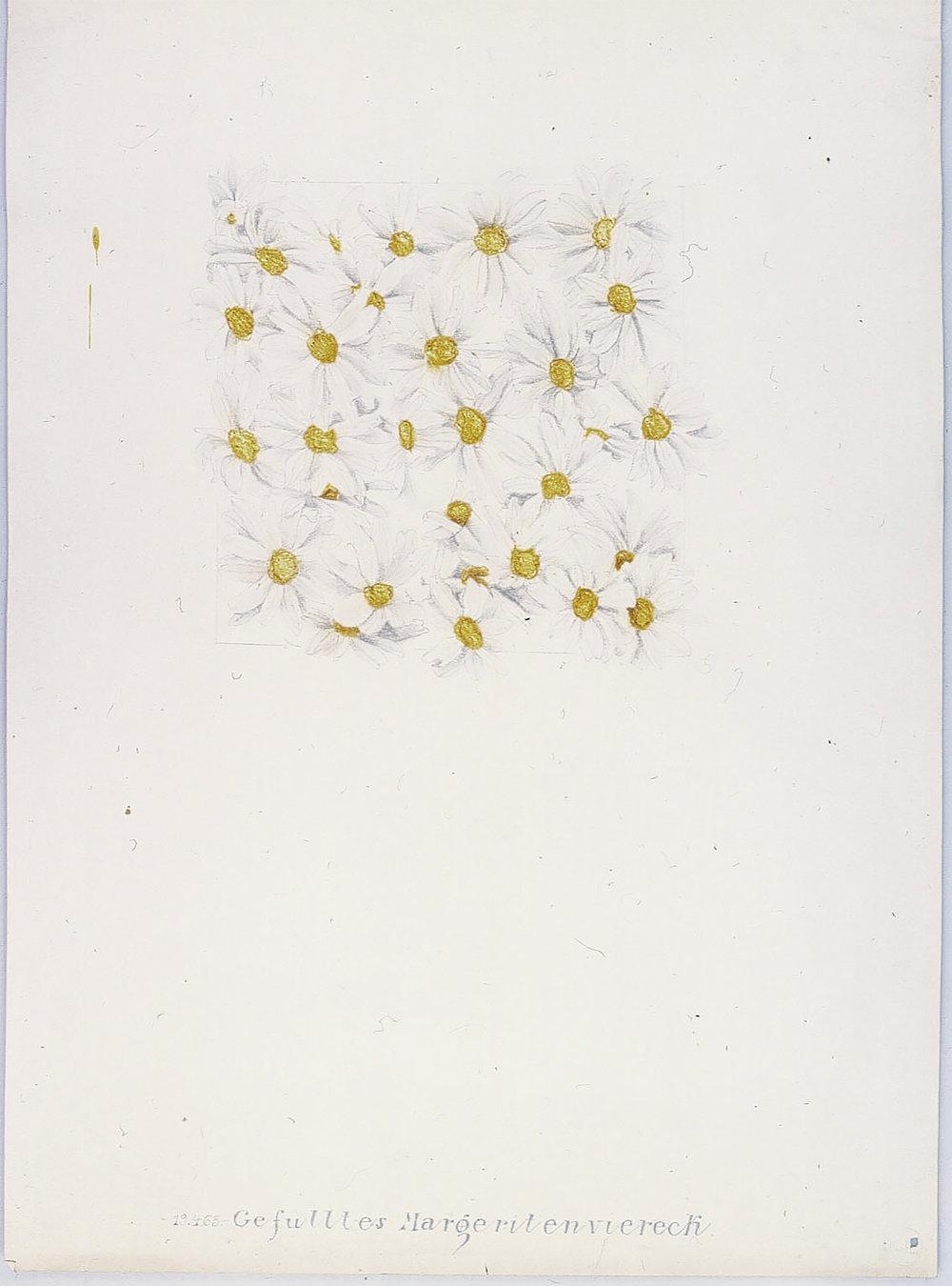 Gefülltes Margeritenviereck | 1965 | Bleistift und Tusche auf Karton | 62 x 44,5 cm
