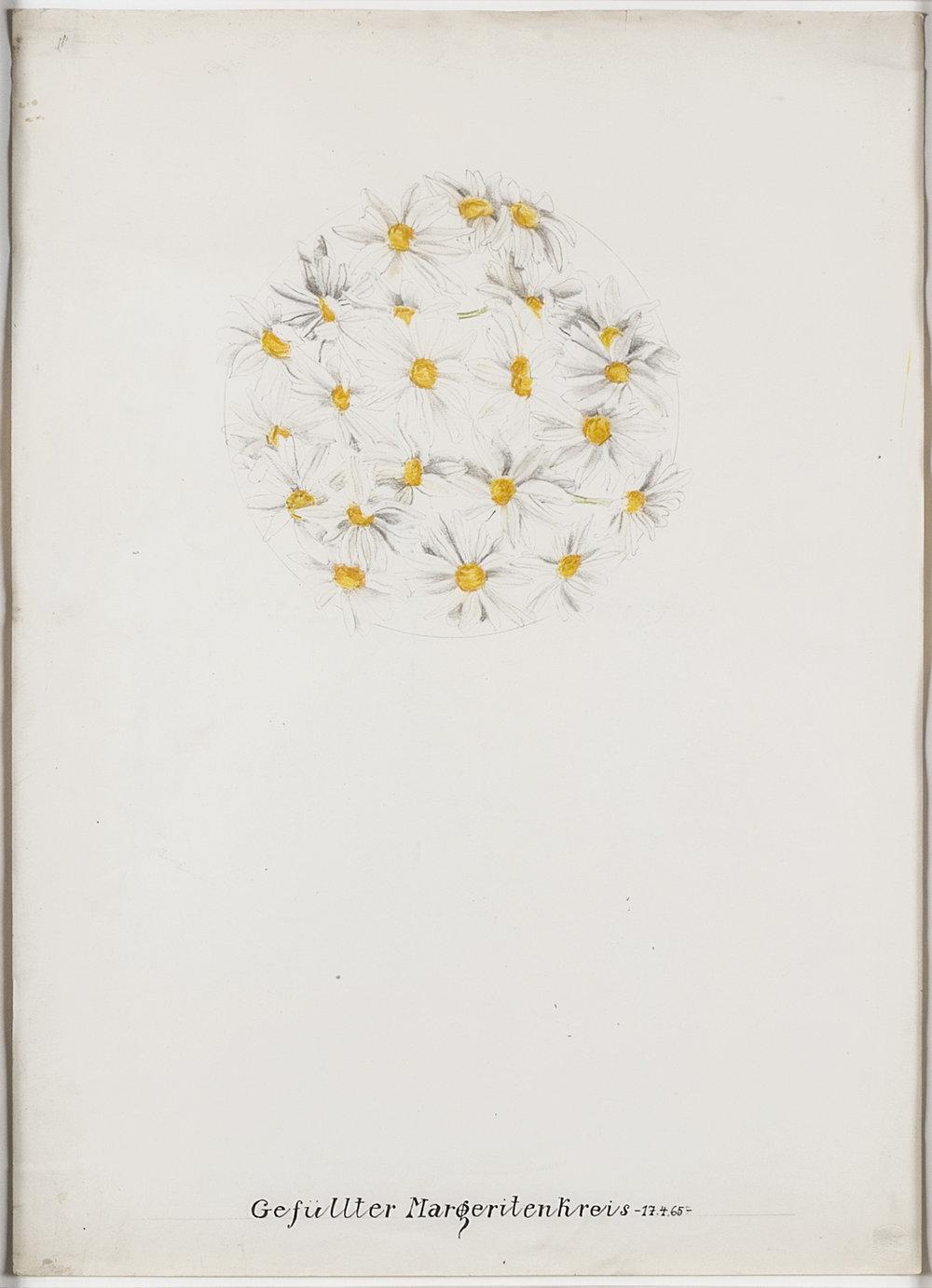 Gefüllter Margeritenkreis | 1965 | Bleistift und Tusche auf Karton | 62 x 44,5 cm