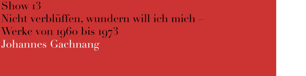 013_Show13_JohannesGachnang.png