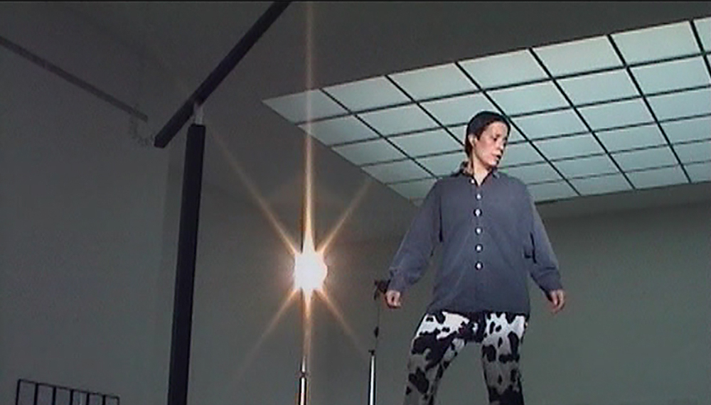 TANZEN IN DER SECESSION   2006   VIDEO   85 MIN