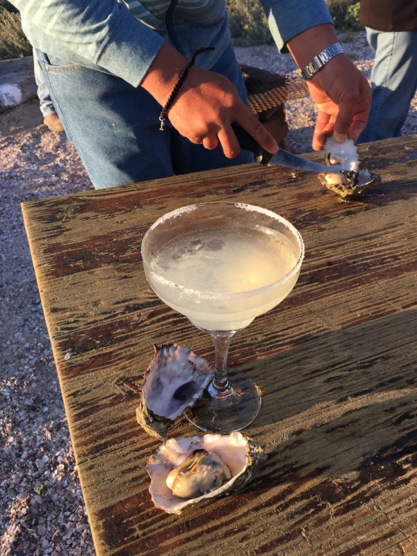 margarita oyster.JPG