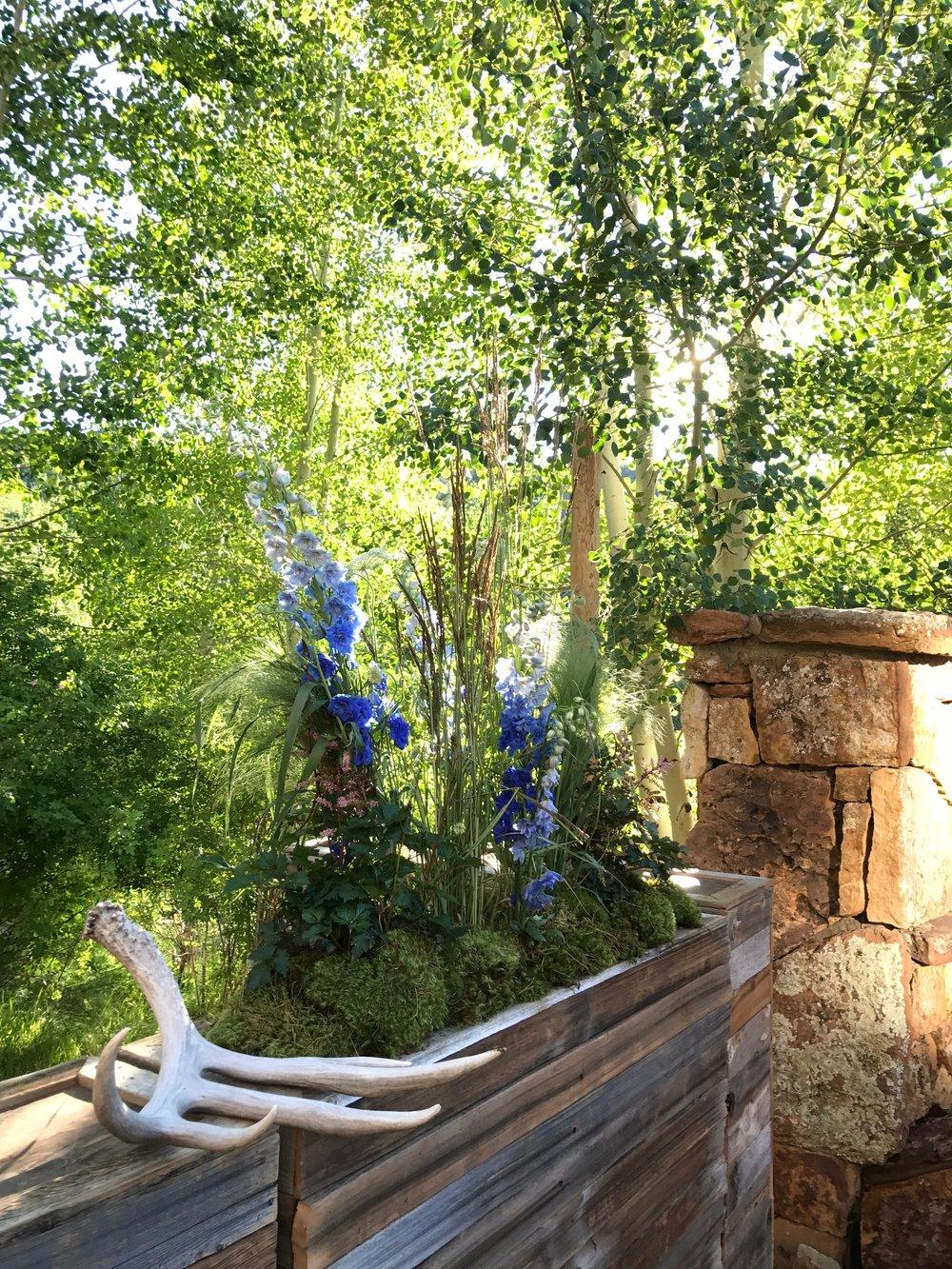outdoor wedding florist colorado