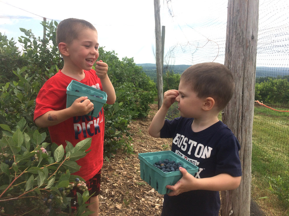 We love berry picking... and eating too!