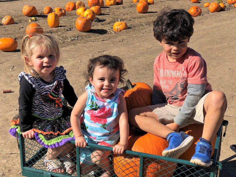 Pumpkin Patch with Good Friends