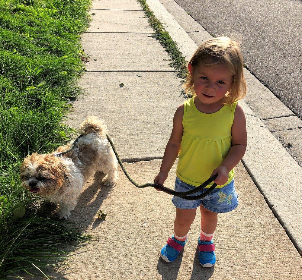 Walking the neighbor's dog