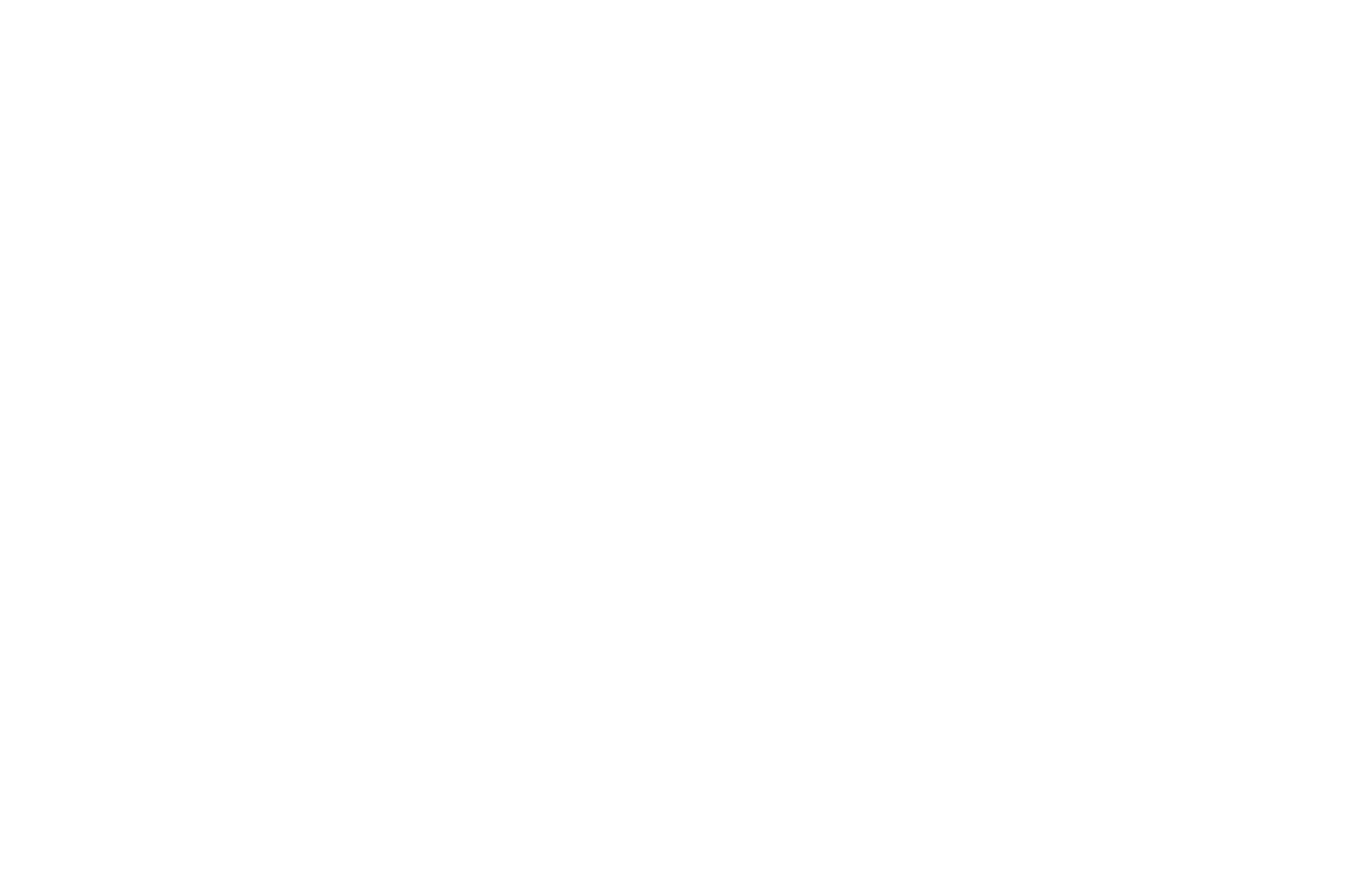 Laurie Sever