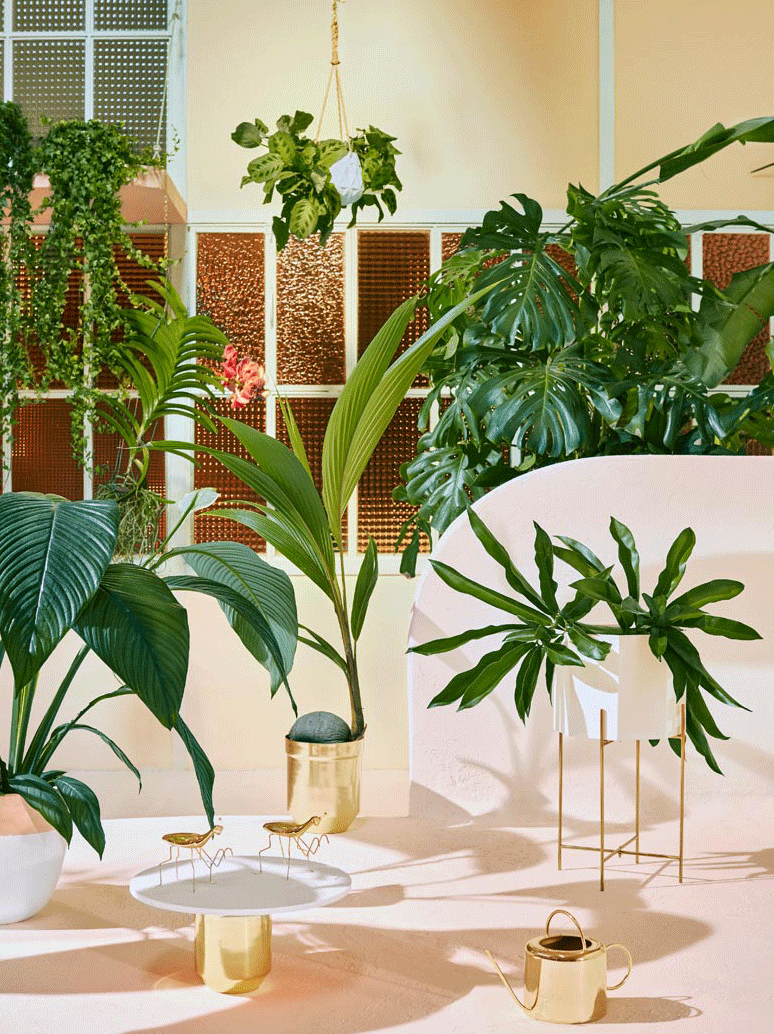 Zara Home - Greenery