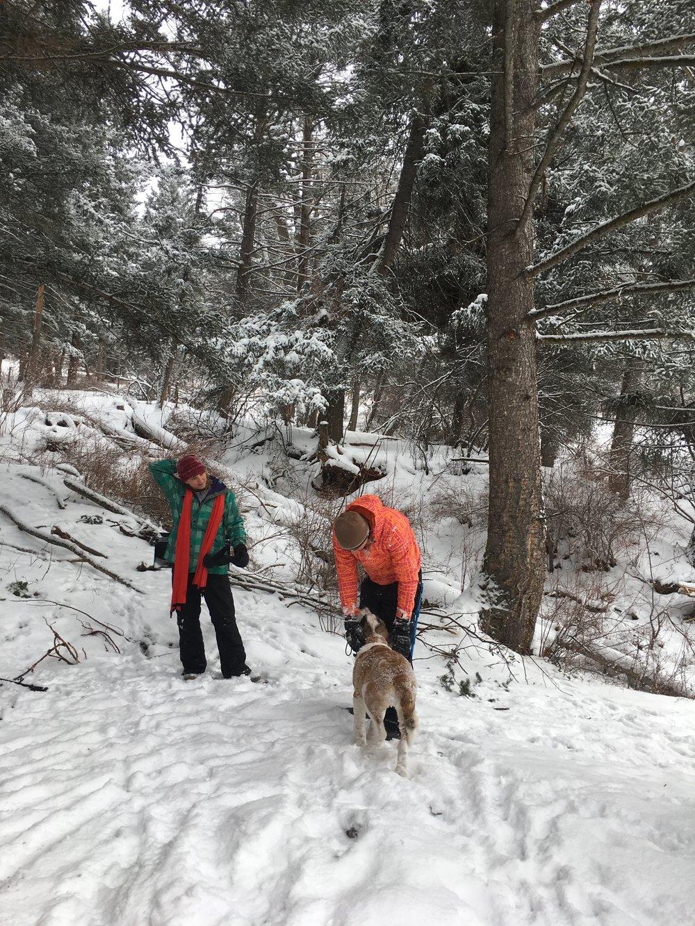 snow tent dog.jpg