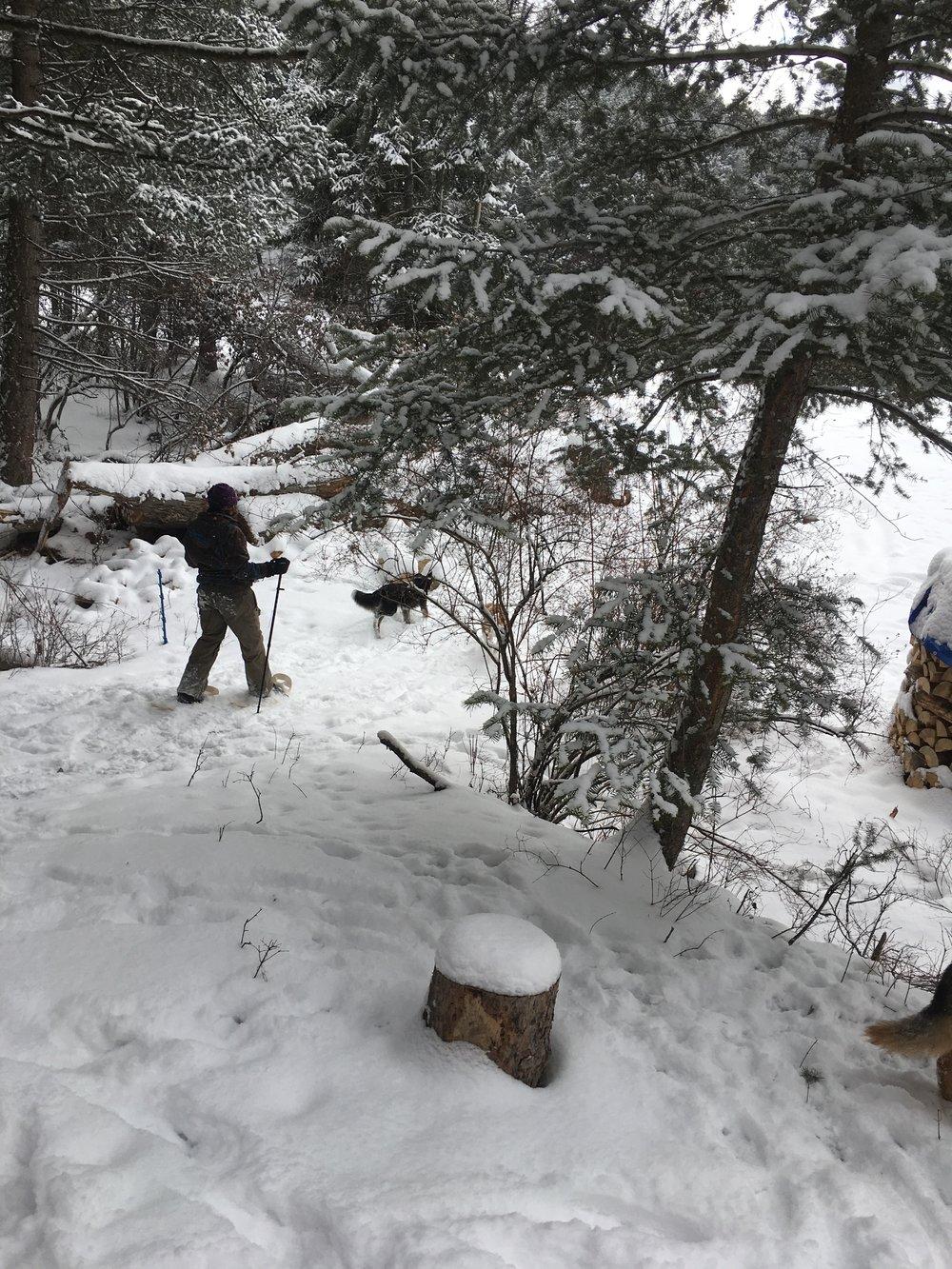 snowtent snowshoe action.jpg