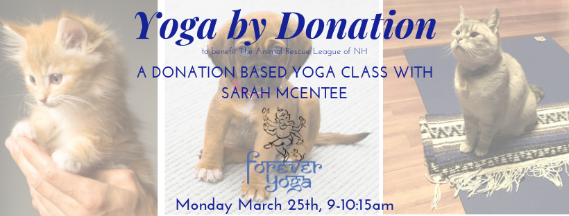 Copy of Yoga for the Animals.png