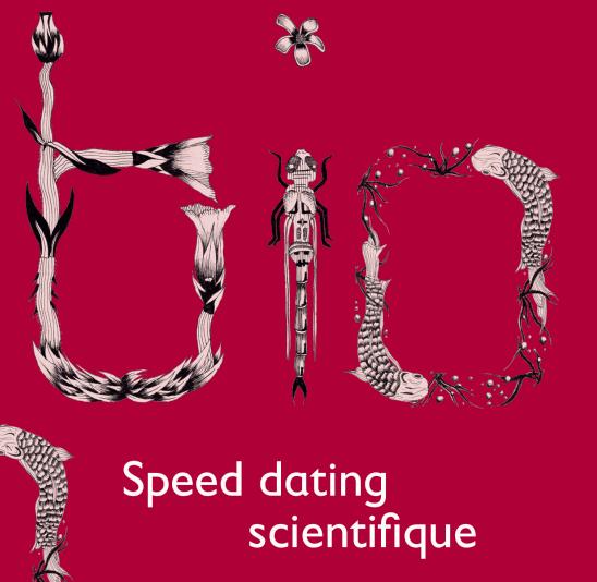 speed dating bern 2015