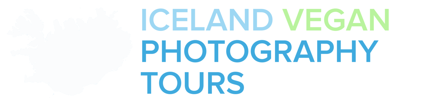 Iceland Vegan Photography Tours