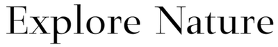 Homepage-20.png
