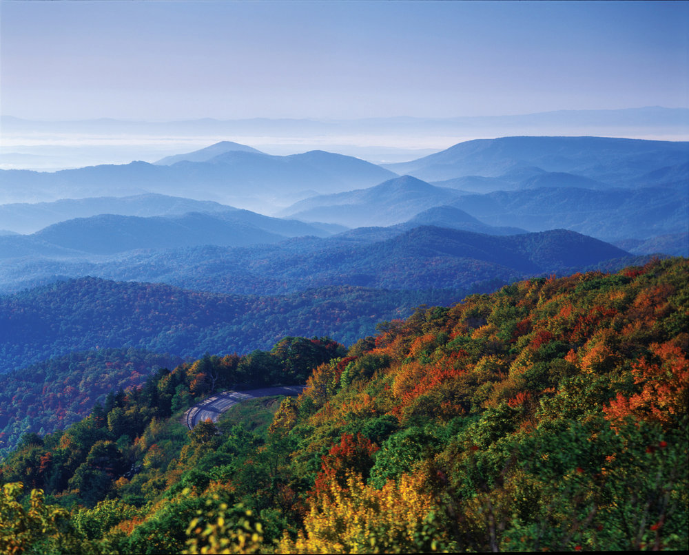 New to Radical Honesty? -
