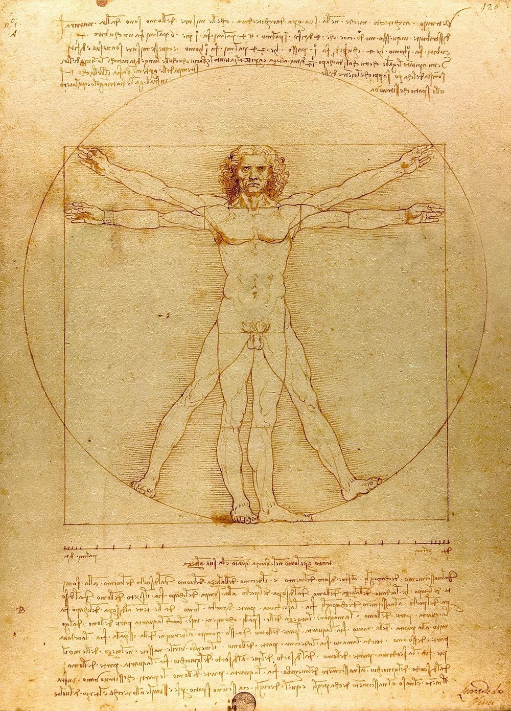 Figure 1.  Leonardo da Vinci,  The Vitruvian Man  (1490).