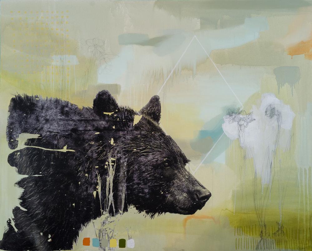 Spring Bear, 2018