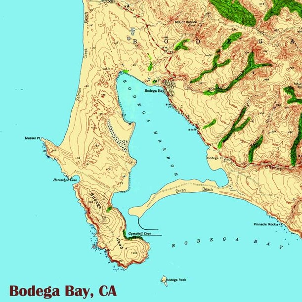 bodega bay 1942 trivet - cropped.jpg