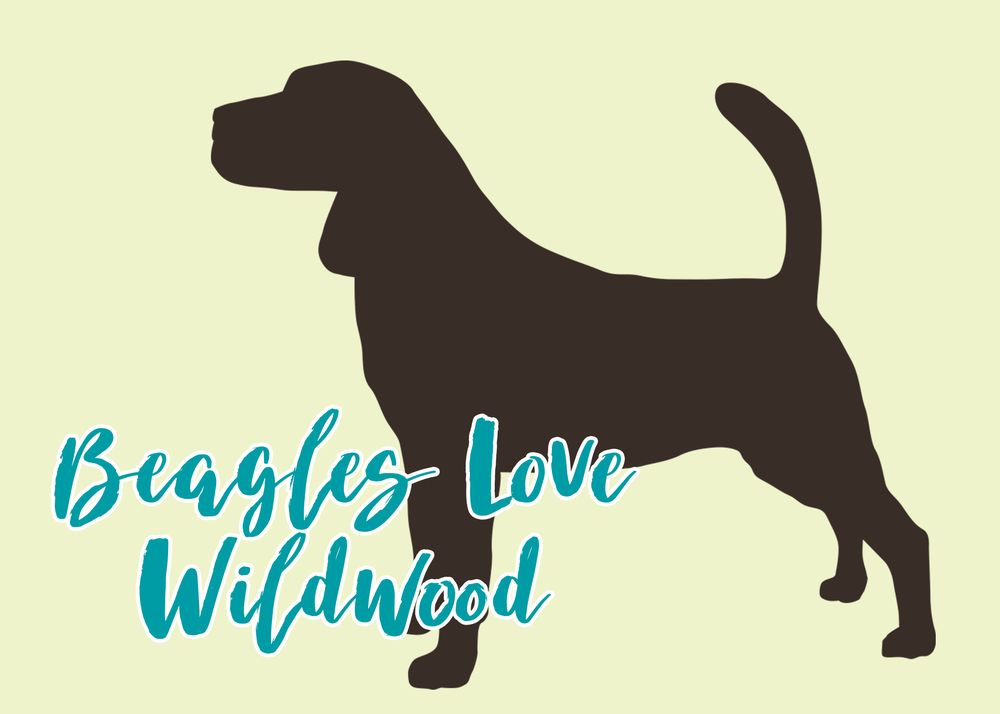 ABS_Dogslove_0006_Beagles--Love-Wildwood.png