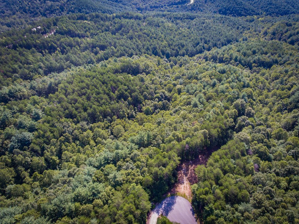 Pisgah Preserve Lot 35-16.jpg