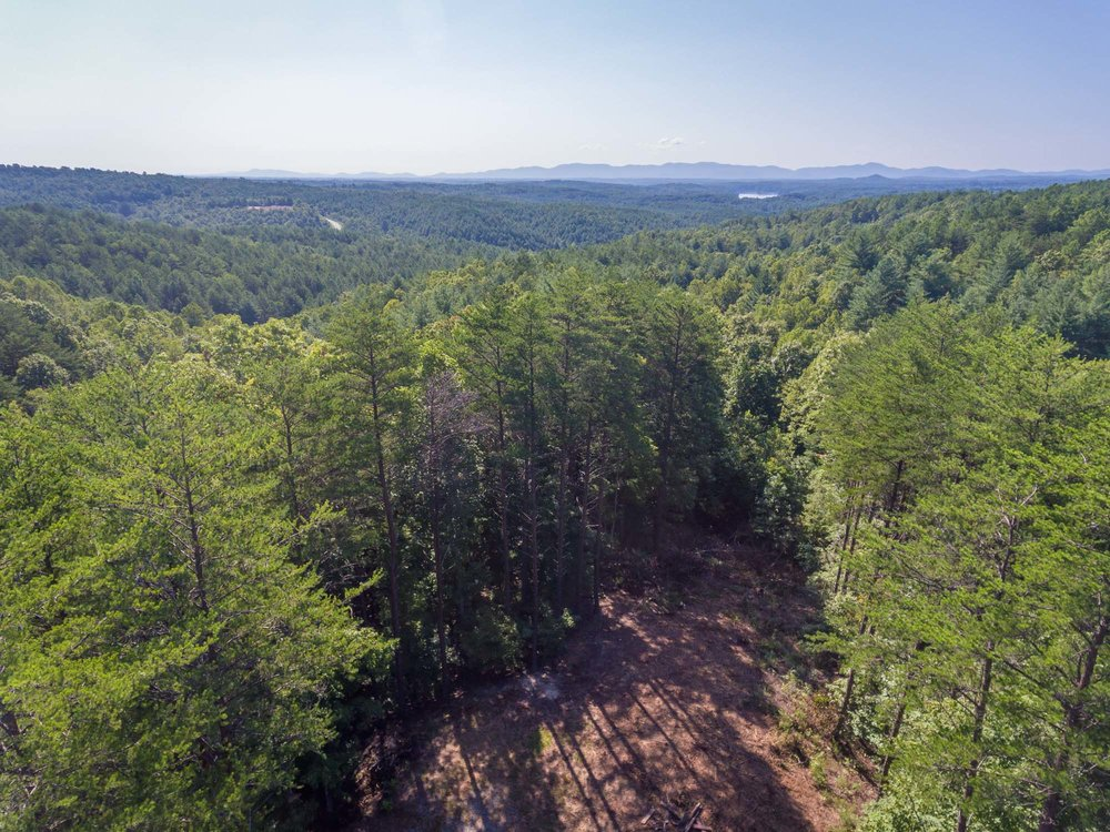 Pisgah Preserve Lot 35-18.jpg