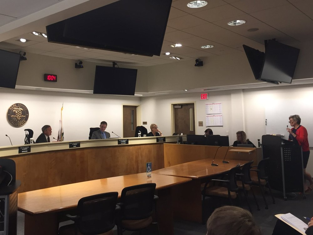 Michele Grupe, Executive Director and Co-Chair of CAPC, giving the  Report on Children  to the Napa County Board of Supervisors.